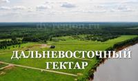 Дальневосточный гектра